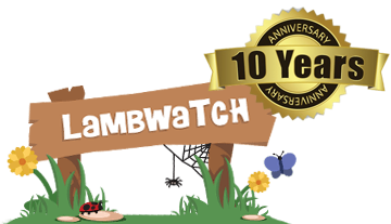 LambWatch is 10 years old!