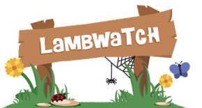LambWatch Logo