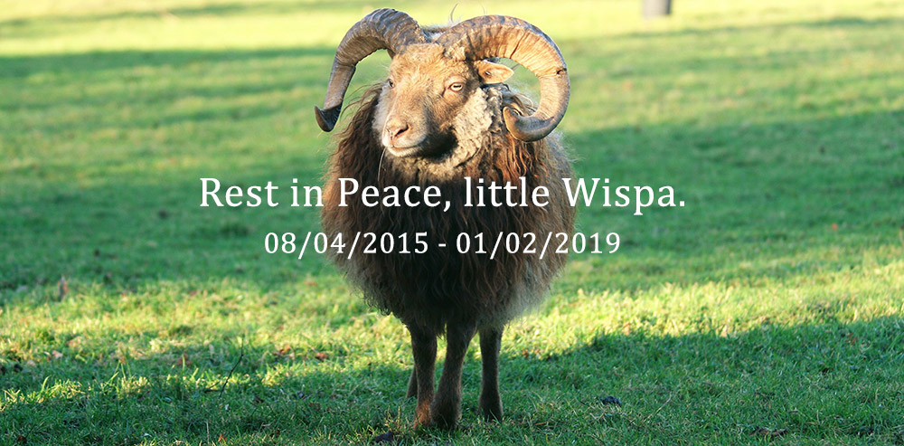Rest in Peace, little Wispa